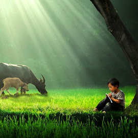 The childhood's memory by Sơn Hải - Digital Art People ( countryside, buffalo, ray, grass, vietnamese, vietnam, learning, asian, child, nature, tree, digital art, asia, sunshine, boy, animal )