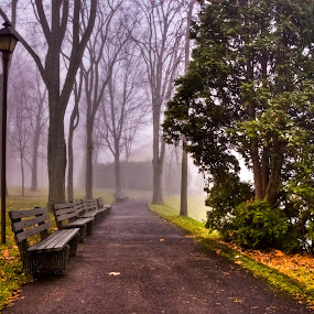 by Luc Belisle - City,  Street & Park  Vistas ( park, bench )