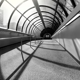 Skywalker by Christopher Pischel - Buildings & Architecture Office Buildings & Hotels ( office, urban, b&w, black and white, perspective, lines, hotel, skywalk, shadows, tunnel, city )