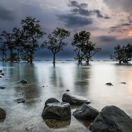 Peekaboo Sunshine by Taufik Amir Setio Pratomo - Landscapes Sunsets & Sunrises