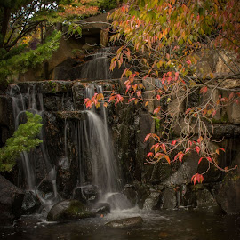 Gentle Autumn by Leoni Williams - City,  Street & Park  City Parks ( water feature, autumn, cascade, fall, waterfall, gardens, botanical gardens )