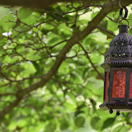 Garden Lantern  by Lorraine D.  Heaney - Artistic Objects Other Objects