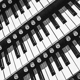 Keyboard by Richard Michael Lingo - Artistic Objects Musical Instruments ( organ, keyboard, musical instrument, church, artistic object )