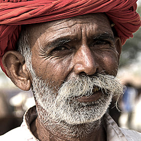 by Amit Aggarwal - People Portraits of Men ( wrinkles, camel fair, pushkar, rajasthan, turban, white, india, moustache, portrait, , Travel, People, Lifestyle, Culture )