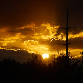 Sun Set by Lynn Andrasko - Nature Up Close Other Natural Objects
