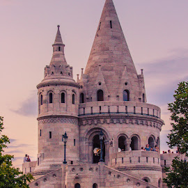 fisherman's bastion in budapest by Mo Kazemi - Buildings & Architecture Public & Historical ( budapest hungary, castle, fisherman's bastion, budapest, bastion, europe, hungary, architecture )