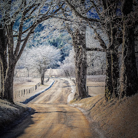 Hyatt lane by Ted McCrary - Landscapes Prairies, Meadows & Fields