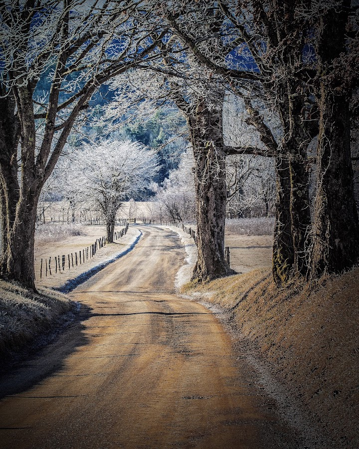 Hyatt lane by Ted McCrary - Landscapes Prairies, Meadows & Fields (  )