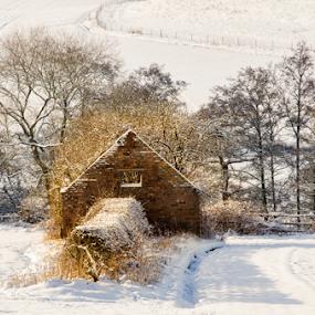 by Steven Stamford - Landscapes Weather ( derbyshire winter landscape, winter, barn, snow, abandoned barn,  )