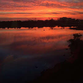 Morning reflection from the train by Karen Coston - Instagram & Mobile iPhone ( sunrise, caltrain, iphone, smell the roses, beauty in the small things )