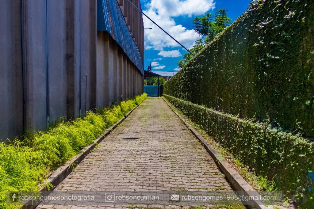 Barracão para Locação - Parque Novo Mundo