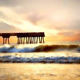 South Carolina sunrise by Gena Saucier - Landscapes Sunsets & Sunrises ( beach, sunrise, waterscapes )