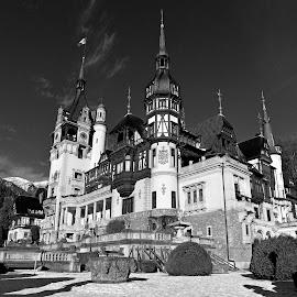 Peles Castle - Romania by Agatanghel Alexoaei - Black & White Buildings & Architecture