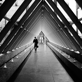Sky Bridge by Steve Wilking - City,  Street & Park  Street Scenes ( black and white collection, Urban, City, Lifestyle,  )