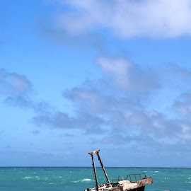 Sunk by Landi Cordier - Landscapes Beaches ( stranded, sunken, blue, ship, ocean,  )