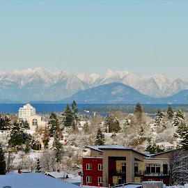 Coast Mountain Range by Carol Leynard - Landscapes Mountains & Hills ( mountains, snow, buildings, city )