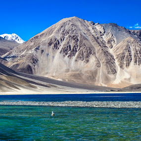 Pangong Tso, Ladakh,IN by Akash Deep - Landscapes Mountains & Hills ( salt water lake, indo-tibet border, changthang platue, pangong tso, incredible india, lakes in himalayas, pangong lake, ladakh, himalayas )
