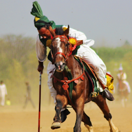Tent Pegging by Kashif Ali Qureshi - Sports & Fitness Other Sports ( pakistan, tent pegging, islamabad, horses, sports )
