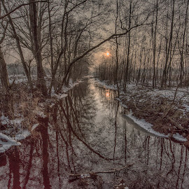 canal in the woods by Egon Zitter - Landscapes Prairies, Meadows & Fields ( countryside, afternoon, meadow, trees, canal, river )