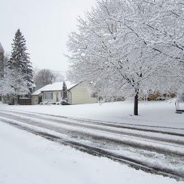 Winter Street by Carl VanderWouden - City,  Street & Park  Street Scenes