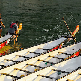 Dragon Boats by Koh Chip Whye - Transportation Boats