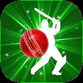 Cricket League (BPL, Big bash)