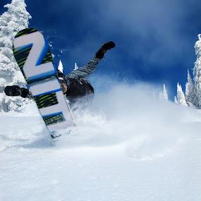 Pressin' tail by Michael Nania - Sports & Fitness Snow Sports ( snow, big mountain, snowboarding, nitro )