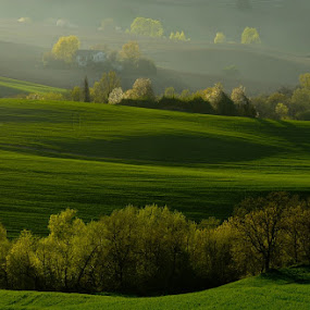 ***Green*** by Frans Scherpenisse - Landscapes Prairies, Meadows & Fields ( green, italy, fields )