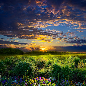 Let It Be by Phil Koch - Landscapes Prairies, Meadows & Fields ( summer. spring, vertical, photograph, farmland, yellow, leaves, love, nature, autumn, snow, flowers, orange, twilight, agriculture, horizon, portrait, environment, winter, season, national geographic, serene, floral, inspirational, natural light, wisconsin, phil koch, spring, photography, sun, farm, ice, horizons, inspired, office, clouds, green, scenic, morning, field, spring colorful flowers, red, blue, sunset, fall, peace, meadow, earth, sunrise, landscapes,  )