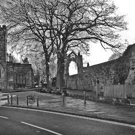Gisborough Priory and St Nichs by Martin Davis - Buildings & Architecture Places of Worship ( ston, arch, tree, church, street, fine art, study, road, travel, black&white )
