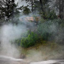 Out of the Mist by Rhonda Tucker - Landscapes Travel ( yellowstone sept 2014 mammoth, national park, green, hot spring, mist,  )