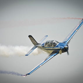 Photogenic by Greg Harrison - Transportation Airplanes ( t34, beech mentor, julie clark, quad city air show, air show )