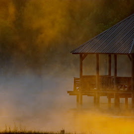 Misty Lake 3 by Ann Mcmillian - Novices Only Landscapes (  )