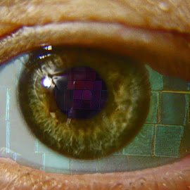 an eye for disco by Megan Gallup - People Body Parts ( purple, color, green, disco, view, reflect, eye )