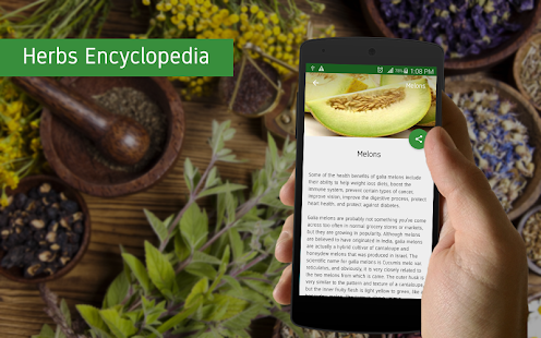 Herbs Encyclopedia screenshot for Android