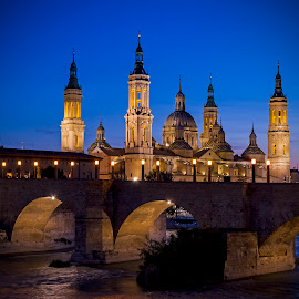 The Cathedral-Basilica of Our Lady of the Pillar by Darren Wilmin - Buildings & Architecture Architectural Detail ( zaragoza, the cathedral-basilica of our lady of the pillar, cathedral, bridge, worship, spain )