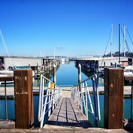 Everett Marina  by Todd Reynolds - City,  Street & Park  Vistas