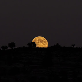 moon rises by Onur Köksal - Landscapes Starscapes