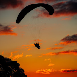 Paraglider in the sunset by Ricardo Costa - Sports & Fitness Other Sports ( clouds, paraglider, sunset )