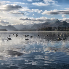 by Bob Brown - Landscapes Travel ( derwentwater, sky, fog, lake, uk lake district, keswick )