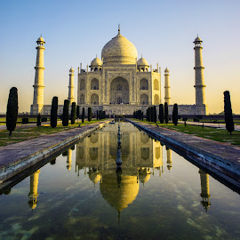 The Taj Mahal by Chris Brown - Buildings & Architecture Places of Worship ( taj, mausoleum, uttar pradesh, sun, symmetrical, royal, mahal, agra, india, sunrise, glowing, symmetry, palace, light, golden )