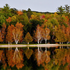 Season Swings by Kathy Woods Booth - Landscapes Waterscapes ( michigan, reflection, autumn, reflections, autumn colors )