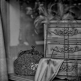 Window Shopping by Tracy Hughes - Digital Art Things