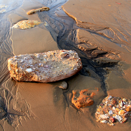 Veins of Sand by Robyn Weber - Landscapes Beaches