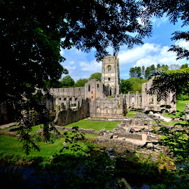fountains abbey, ripon, north yorkshire by Keith's Captures - Buildings & Architecture Public & Historical ( raw, churh, uk, neff, fountains, framed, monastry, north, gb, picture, religion, england, frame, yorkshire, trees, ripon, abbey )