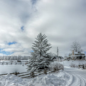 Beautiful winter morning  by Debbie Johnson MacArthur - Landscapes Weather