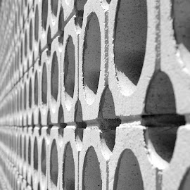 Endless wall by Tony Moore - Abstract Patterns ( abstract, vertical, patterns, hickory, black and white, nc, bw, converging lines, holes, wall,  )