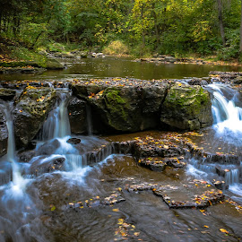 by Kathy Suttles - Landscapes Waterscapes