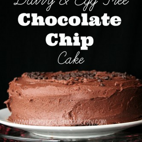 Dairy, Egg, & Nut Free Chocolate-Chocolate Chip Cake