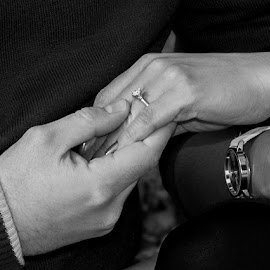 The Ring by Abby Ostrom - People Couples ( love, black and white, wedding, engagement ring, engagement )